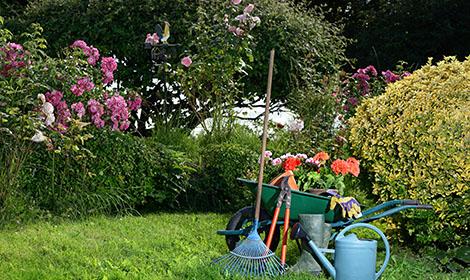 gereedschap voor tuinonderhoud